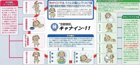 11種混合ワクチン11