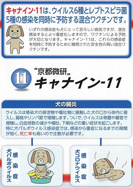 11種混合ワクチン12