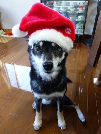 クリスマス20143