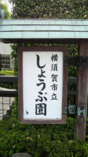 P1000078.jpg