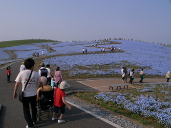 2010_511_5