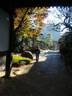 2010_12_11_1