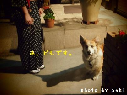64_20130531224529.jpg