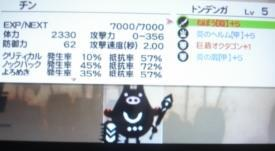 110213 (3)