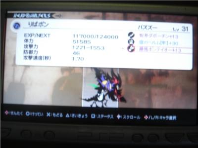 CIMG0543.jpg