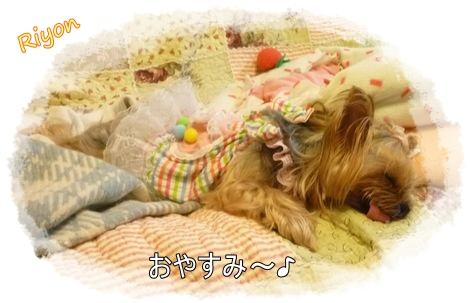 おやすみ③