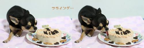 BD-cake_20121231010904.jpg