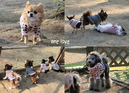 one-love3.jpg