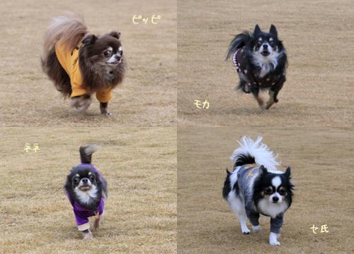 yufuin-dogrun1.jpg