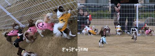 yufuin-dogrun3.jpg