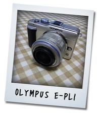 RIMG2005.jpg