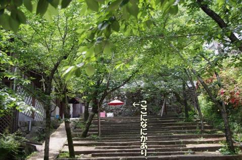 大村公園⑧
