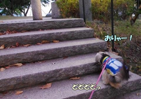 お散歩の後②