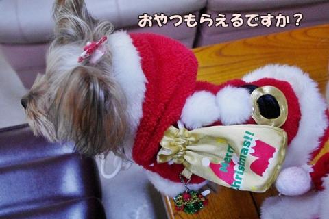 クリスマス撮影③