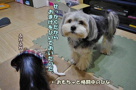 ニアピン賞②