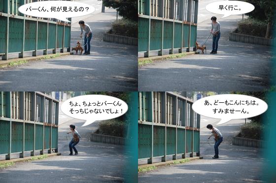 1010-2_20111011081606.jpg