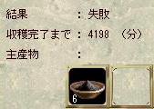 SC3411.jpg