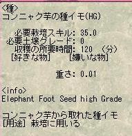 SC3440.jpg