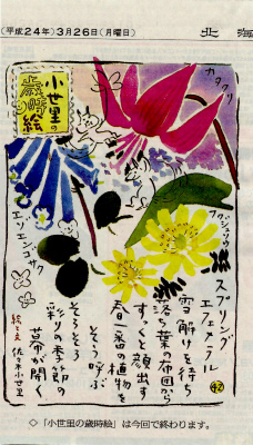 北海道新聞 「小世里の歳時絵」