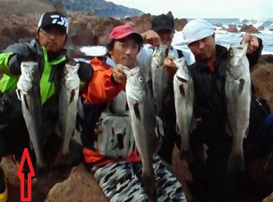 2011年磯シー1