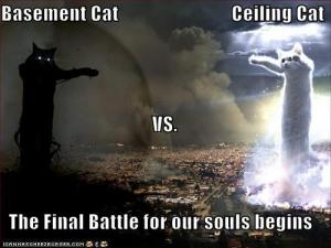 funny-pictures-basement-cat-vs-ceiling-cat.jpg