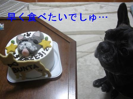 文太誕生日 3