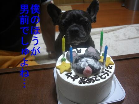文太誕生日 5