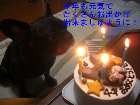 文太誕生日 6