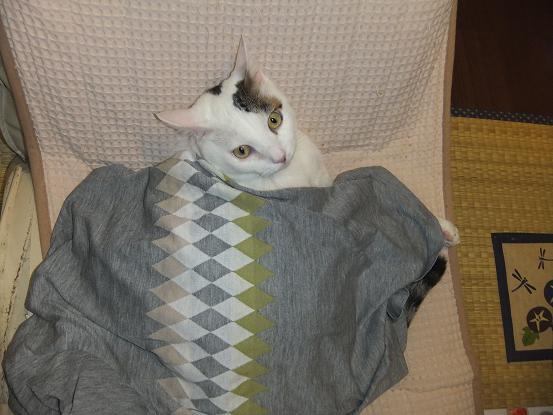 Tシャツの掛け布団2