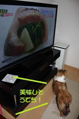 テレビとルナ2