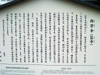 IMG_1849.jpg