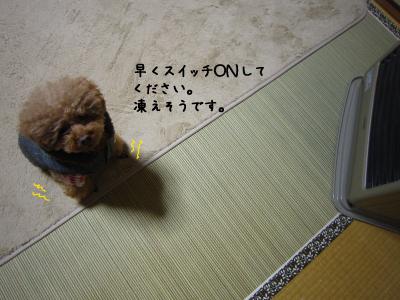 250114E.jpg