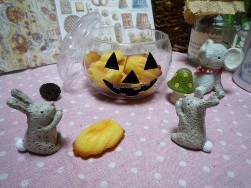 グレープフルーツマドレーヌe