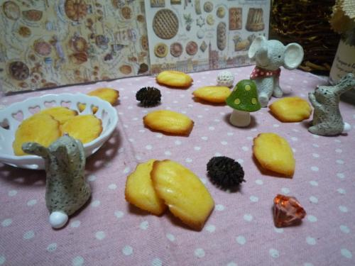 グレープフルーツマドレーヌa