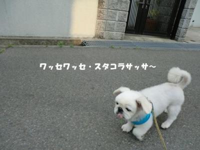 赤ん坊のボク。ヨチヨチ歩きです。