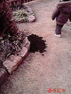 もぐらの土とこーたん
