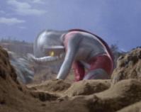ライブキングの巨体が転がり、その体を力一杯押していたウルトラの母は勢い余り片膝を着く