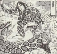 サバイバル試験で大蛇と戦うS