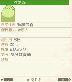 NALULU_SS_0775_20111012124124.jpg
