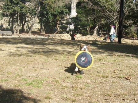 明石公園 (3)
