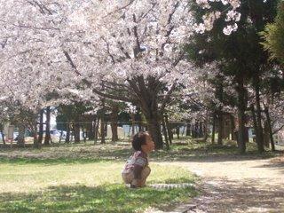 2010年4月 お花見 110