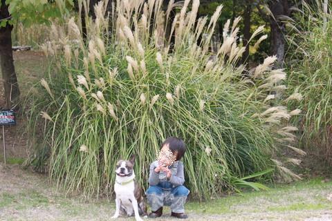 淡路2010 (10)