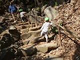 130312_保育園遠足芝公園階段