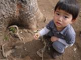 130323_有栖川公園木の根元 (2)
