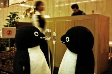 20140913-ペンギンケーキ (17)-加工
