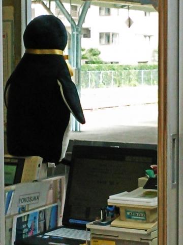 2020141006-icocaペンギンさんより (4)-加工