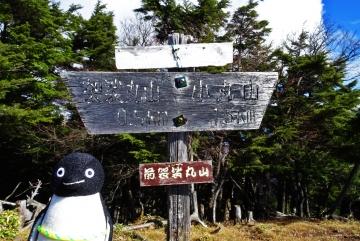 20141104-袈裟丸山 (2)-加工