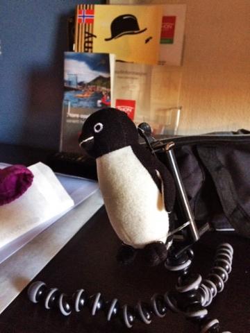 20141006-04フレームペンギン-加工