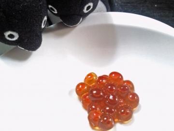 20141109-醤油漬けイクラ (1)-加工