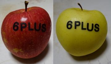 20141129-apple 6 (35)-加工